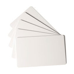 Durable Duracard Standard Cards (100)