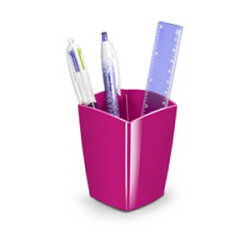 CepPro Gloss Pencil Cup Pink 530G